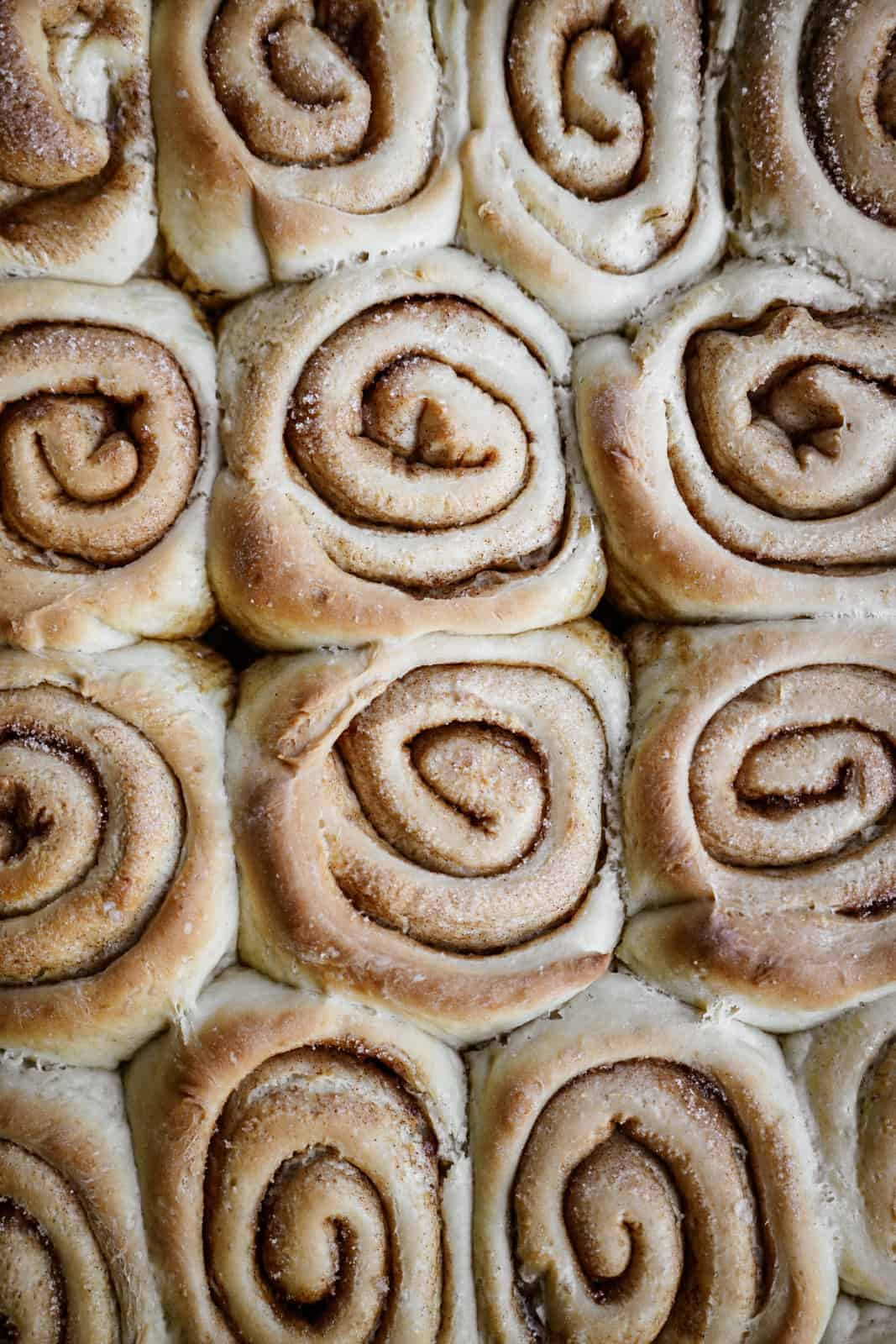 Cinnamon buns without icing.