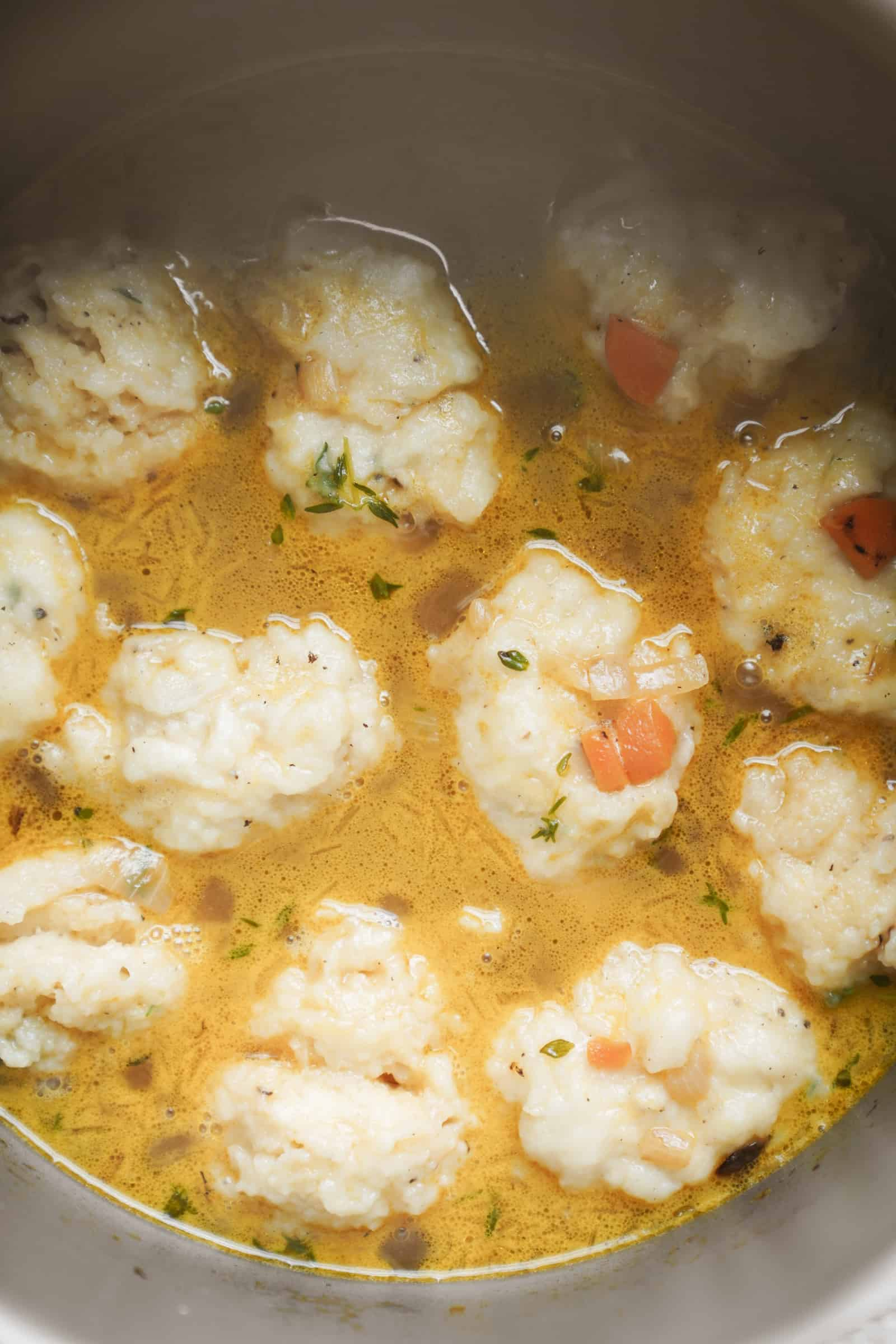 vegan dumplings & vegetable soup